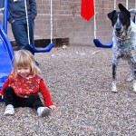 Supervised time in yard is fun for all